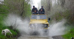 Jeep Safari, Quad bike and private tours